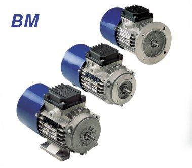 M.G.M Motori Elettrici S.p.A Brake Motors